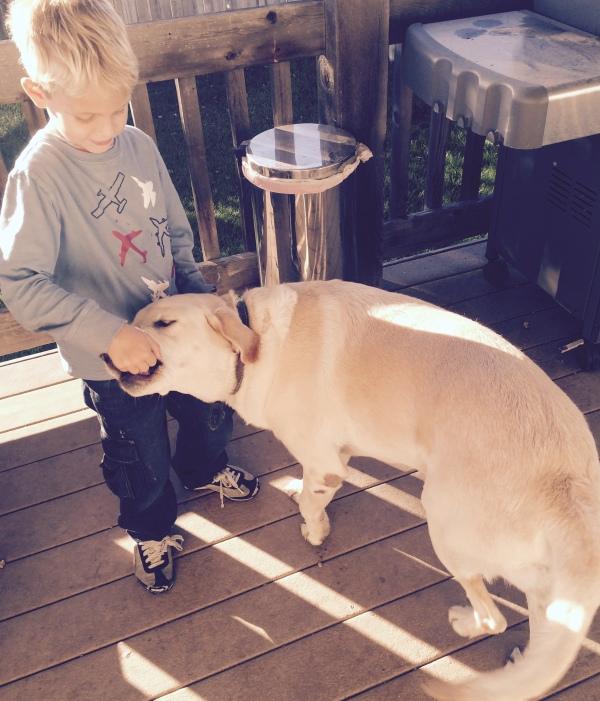 dog and child